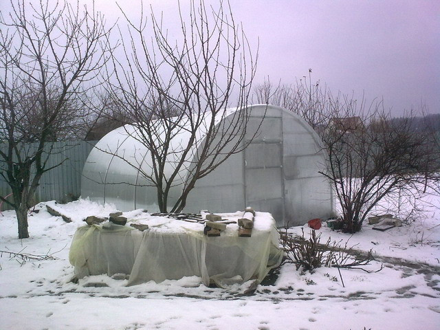 Как правильно обустроить зимнюю теплицу