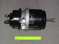 Камера торм. Тип 20/24HFL3(RIDER) RD 019263