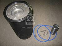 Гильзо-комплект Д 245Е3 (Г( фосфатное )( П( фосфатное )+кольца+палец+уплотнитель ) пал.38 мм , ЭКСПЕРТ Поршень Комплект (МОТОРДЕТАЛЬ)