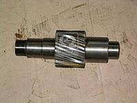 Шестерня ведущая цилиндрическая Z=13 (пр-во КамАЗ) 5320-2402110-10