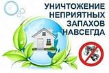 Озонирование помещений. дезинфекция . удаление вирусов и бактерий, фото 2