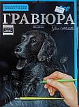 Гравюра А4 Собачка Серебро, фото 2