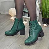 Ботинки женские кожаные на устойчивом каблуке, цвет зеленый, фото 2