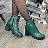 Ботинки женские кожаные на устойчивом каблуке, цвет зеленый, фото 4
