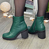 Ботинки женские кожаные на устойчивом каблуке, цвет зеленый, фото 5