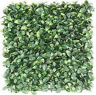 Декоративное зеленое покрытие Самшит молодой 50х50 см GCK-05