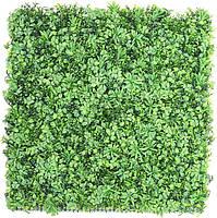Декоративное вертикальное озеленение Фитостена 100x100 см GCK-09