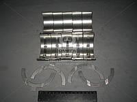 Вкладыши коренные Р1 Д 240 АО10-С2 (пр-во ЗПС, г.Тамбов) А23.01-81-240сбАС