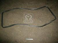 Уплотнитель стекла окна задка ГАЗ 2410 (пр-во ЯзРТИ) 24-5603018
