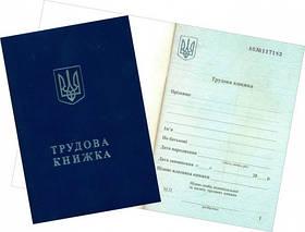 Трудова книжка 64 стор з голограмою сін. Україна