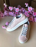 Кеды женские розовые кожаные (натуральная кожа, шнуровка, пудра )
