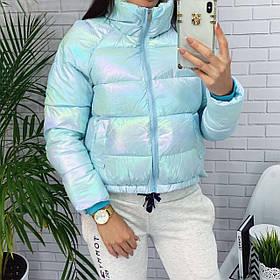Женская короткая куртка на холофайбере и на молнии с высоким горлом (42-46) Голубой