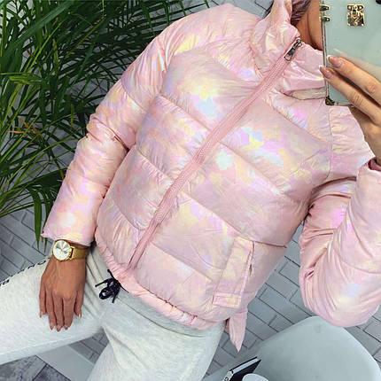 Женская короткая куртка на холофайбере и на молнии с высоким горлом (42-46) Пудра, фото 2