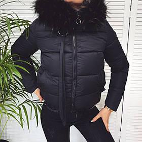 Женская короткая куртка из плащевки на синтепоне, с мехом на капюшоне, на молнии и с карманами  (42-46) Чёрный