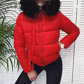 Женская короткая куртка из плащевки на синтепоне, с мехом на капюшоне, на молнии и с карманами  (42-46) Красный