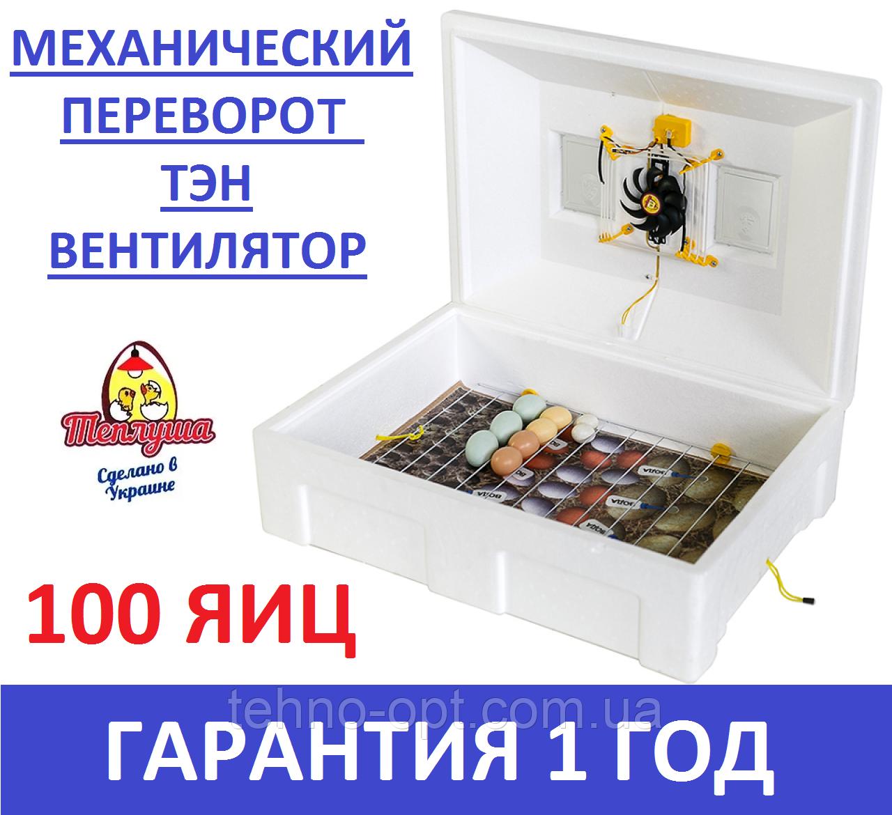 Инкубатор с механическим переворотом Тэновый Теплуша 72 Люкс ИБ 220/50