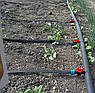 Крапельна стрічка щілинна Veresk 300м відстань 20см., фото 7