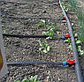 Капельная лента щелевая VERESK 1000 метров, расстояние капельниц 30 см., фото 5