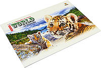 Альбом для малюв. склейка 20/90 А4 №А019/0279 картон. обкл./Мандарин/(40), фото 1
