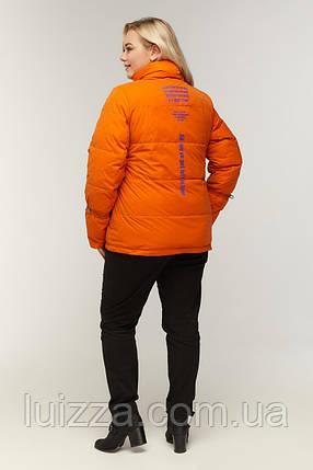 Куртка рюкзак женсккий 52-60р, фото 2