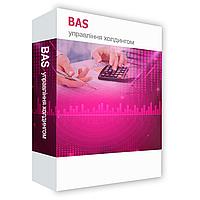 BAS Управління холдингом