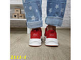 Кроссовки на массивной подошве шарк SHARK красные 36, 38 р. (2111-1), фото 3