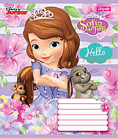 Зошит 12арк. кліт. 1В Sofia Princess №761727(25)(500), фото 1