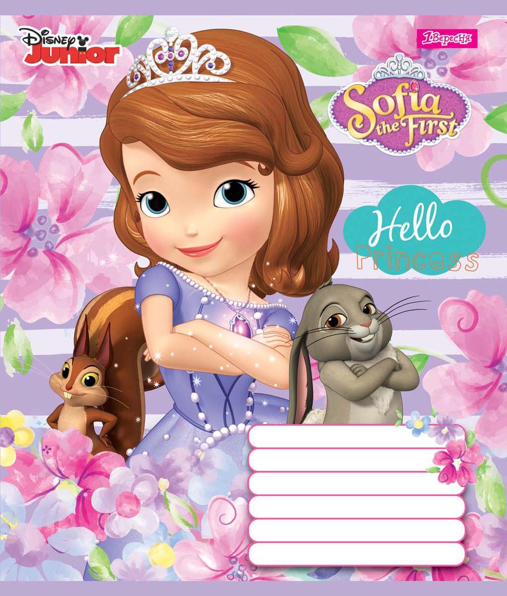 Зошит 12арк. кліт. 1В Sofia Princess №761727(25)(500)