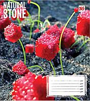 Зошит 24арк. кліт. YES Natural stone №761642(20)(320), фото 1