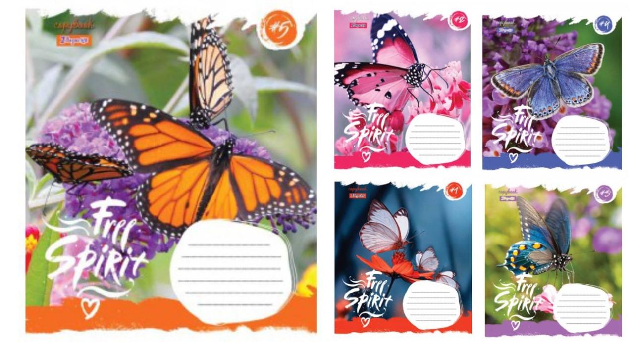 Зошит 24арк. кліт. 1В Butterfly Spirit №762479(20)(320)