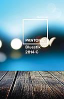 "Зошит пруж. А4 144арк. пласт. обкл. ""Pantone blue"" №681071/Yes/(3)"