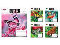 Зошит 36арк. кліт. 1В Butterflys-17 №760366(15)(240)