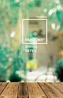 "Зошит пруж. А4 144арк. пласт. обкл. ""Pantone yellow"""" №681061/Yes/(3)"