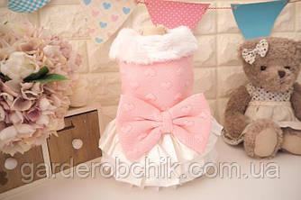 """Теплое платье, пальто для собаки, кошки """"Милашка"""". Одежда для собак, кошек"""
