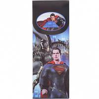 """Пенал """"Супермен + Бетмен"""" разборной 19,5*7,5*2,5см"""