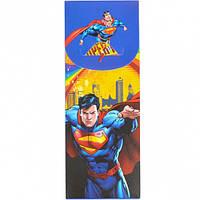 """Пенал """"Супермен"""" разборной 19,5*7,5*2,5см"""