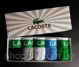 Набір чоловічих трусів Lacoste боксери 5 шт, фото 3