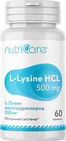 L-Лизин моногидрохлорид 500 мг (L-Lysine) при интенсивных тренировках для улучшения скоростно-силовых...