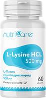 L-Лизин моногидрохлорид 500 мг США (стимуляция умственной деятельности, противовирусное действие)