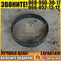 Кольцо проставочное (покупной КамАЗ) (арт. 5320-3101095)