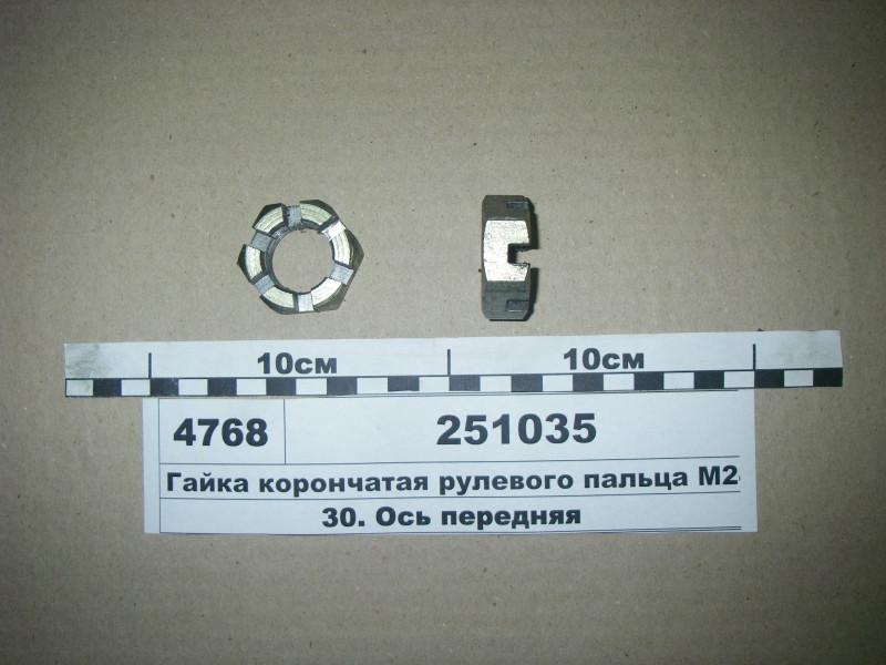 Гайка корончатая рулевого пальца М24х2 (S.I.L.A.) 251035