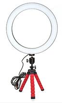 Кольцевая лампа для блогеров (RGBW 8 цветов освещение) 12см. диаметр+мини-студийный Трипод, фото 2