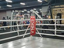 Угловые подушки V`Noks для боксерского ринга, фото 2