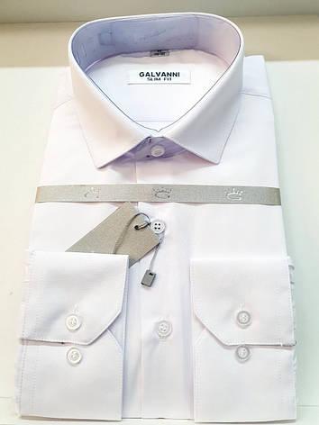 Однотонна чоловіча сорочка Galvani, фото 2