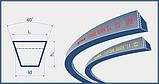 Ремень 8.5х8-1480 (SPZ 1480) Harvest Belts (Польша) 1687610M91 Massey Ferguson, фото 2