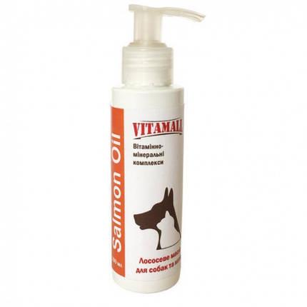 Масло VitamAll Salmon Oil для кошек и собак, лососевое, 100 мл, фото 2