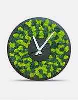 Часы настенные С Мхом D20, 30, 40см.