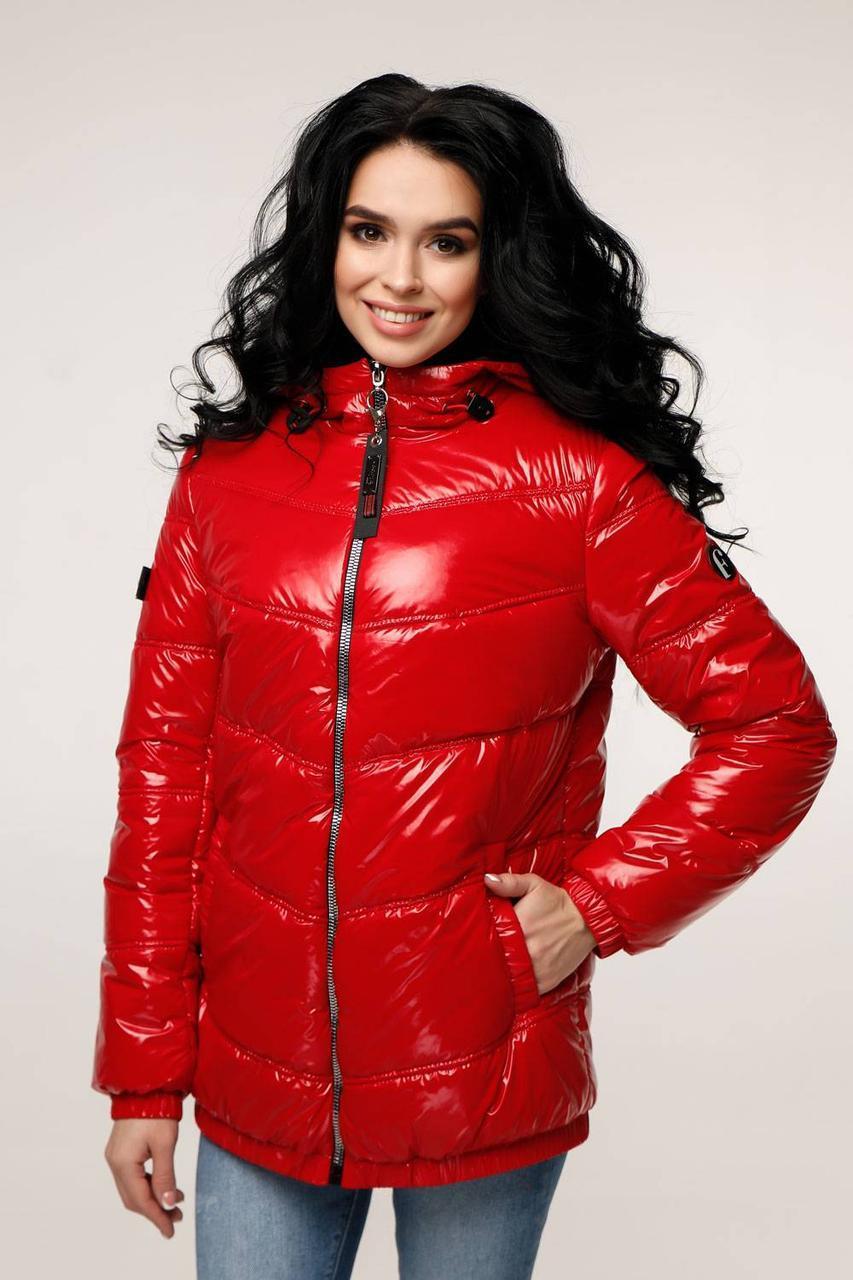 Куртка стеганая демисезонная, выполнена из плащевой ткани Лак - SvitStyle