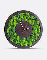 Интерьерные Часы С Мхом Brown D20, 30, 40см.