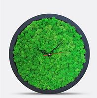 Интерьерные Часы С Мхом Brown D20, 30, 40см